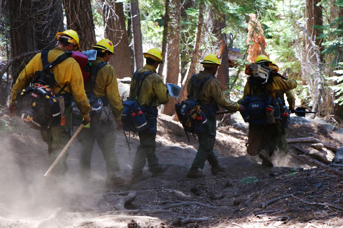 Firefighters construct fire lines to control the Lions Fire in Sierra National Forest.