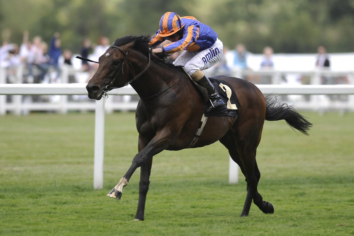 ASCOT, ENGLAND - JUNE 18: Await The Dawn wins The Hardwicke Stakes during day five of Royal Ascot at Ascot racecourse on June 18, 2011 in Ascot, England  (Photo by Alan Crowhurst/ Getty Images)