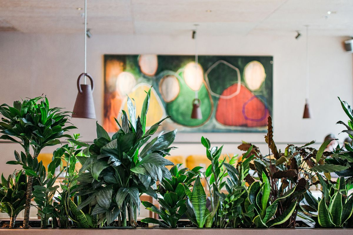 Plants and wall art inside Ikoyi, a Michelin-starred west African restaurant in London