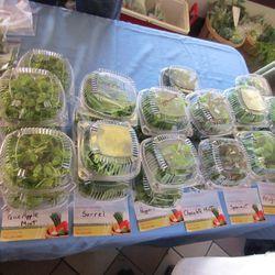 Herbs from Las Vegas Grown Produce.