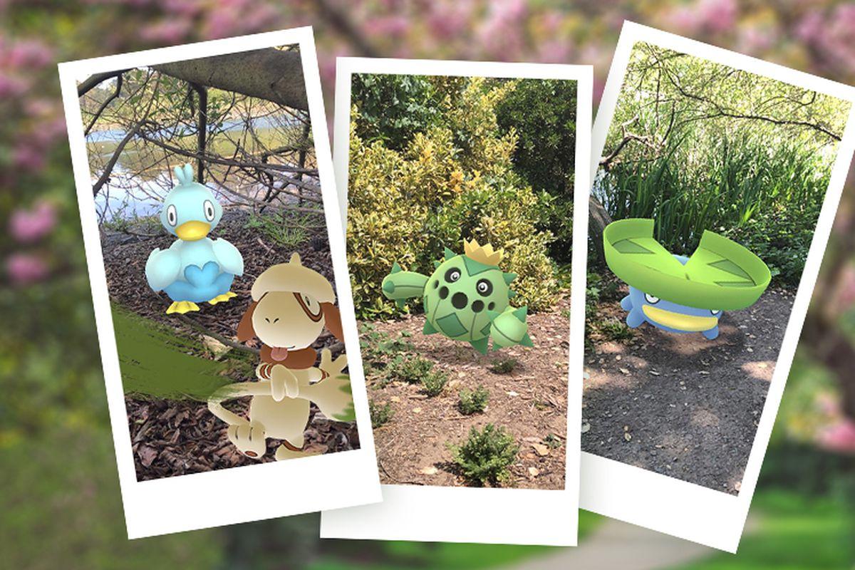Polaroids of several Pokémon, like Ducklett and Lotad