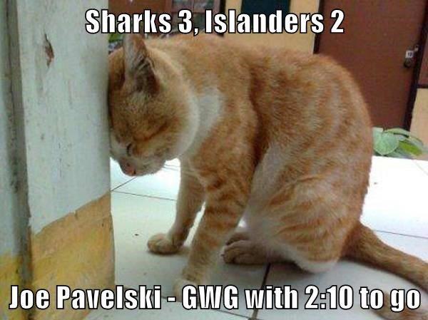 2016-17 Re-Cat Islander Sharks
