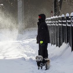 A person walks a dog in the Edgewater neighborhood Tuesday after a snowstorm hit Chicago.