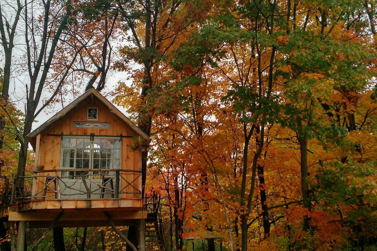 A small treehouse with two barn doors and a front porch sits high in autumn-colored treetops.
