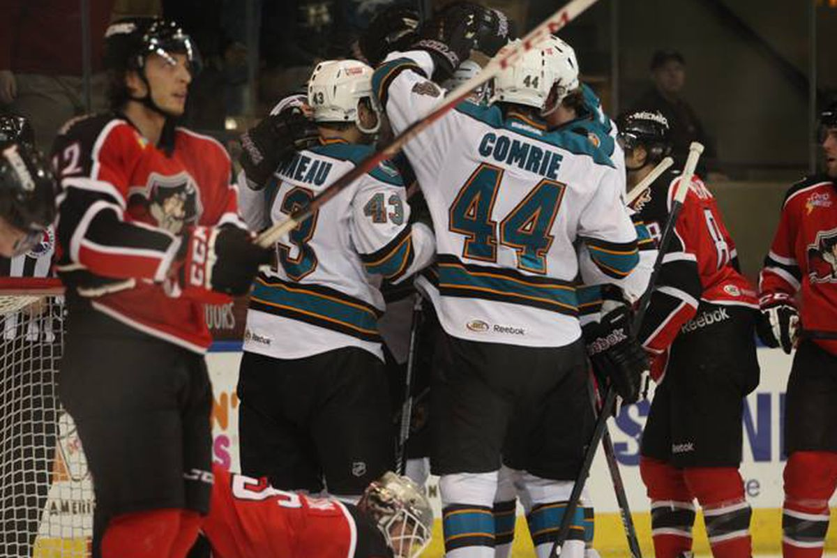 The Worcester Sharks celebrate one of their eight goals Friday night in an 8-2 win over the Portland Pirates at the DCU Center.