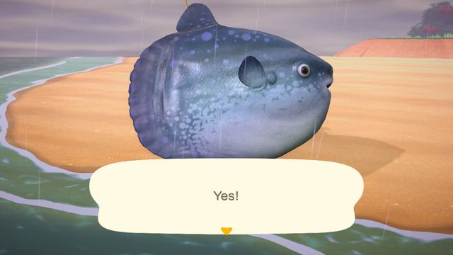 An Animal Crossing character holds up an Ocean Sunfish, but it's so big that you can't see the character behind the fish.