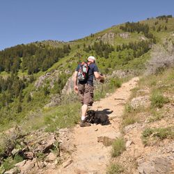 RC Randall walks along the trail to the wind caves with dog Toby.