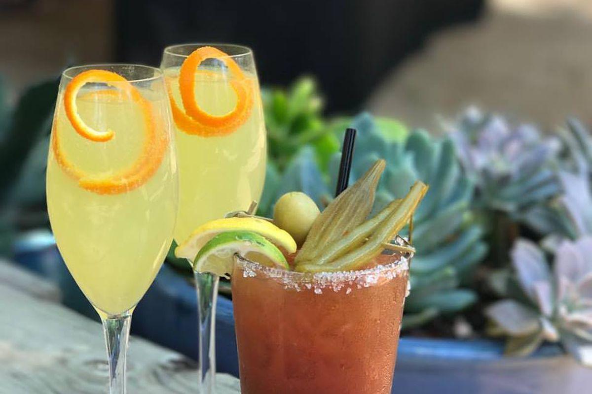 Indian Roller's cocktails
