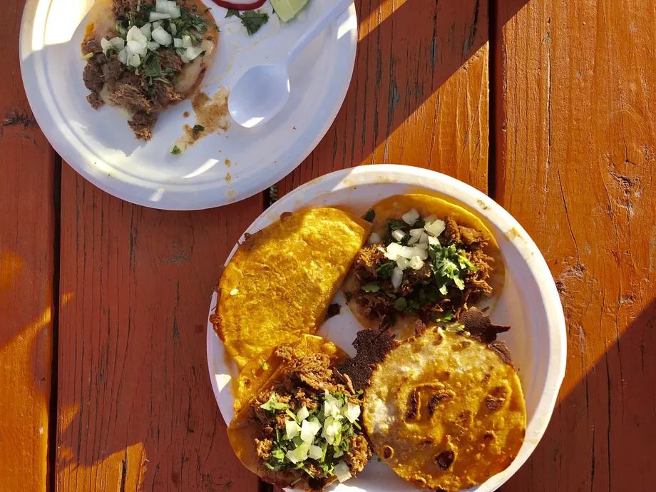 Four tacos sit on a white plate, while two tacos sit out of frame on paper plates at Birrieria la Plaza