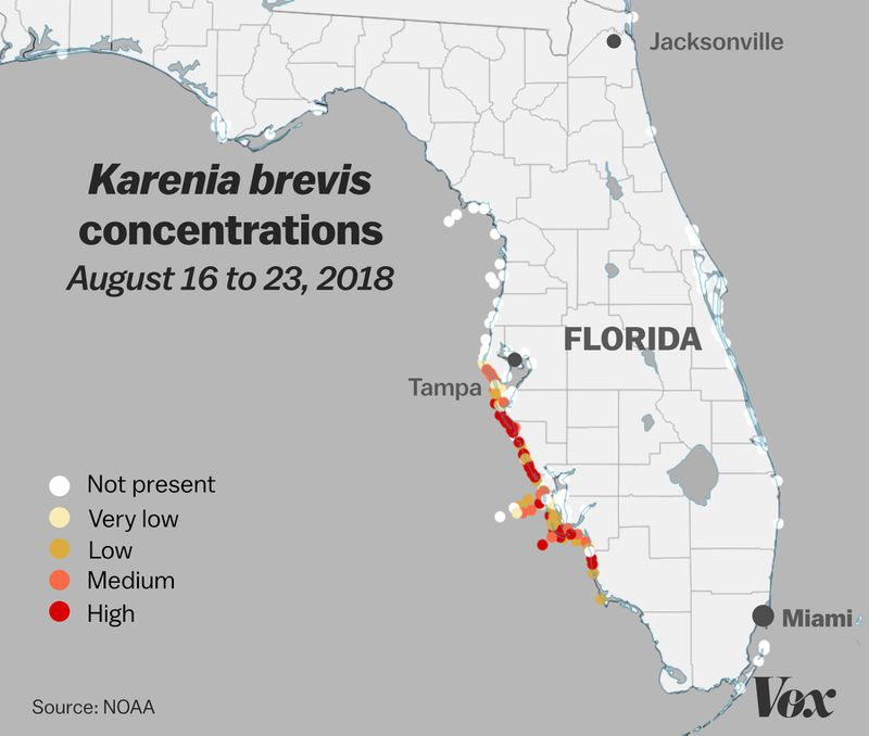 red_tide_map Why Florida's red tide is killing fish, manatees, and turtles