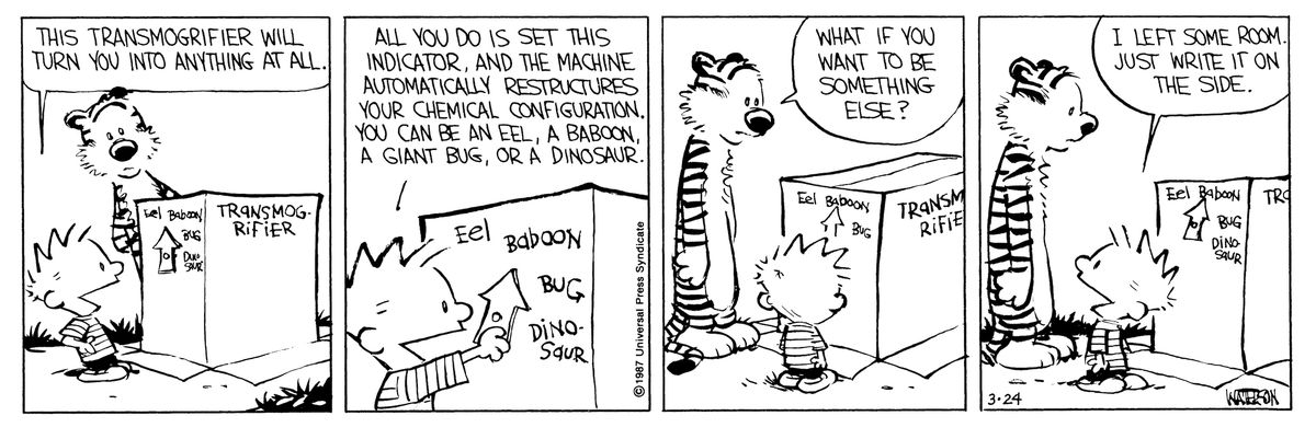 calvin sets his transmorgifier box in a calvin and hobbes comic