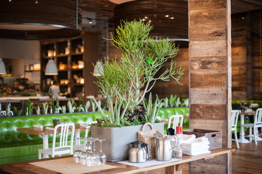 True Food Kitchen Design the point brings shophouse, true food kitchen, and north italia to