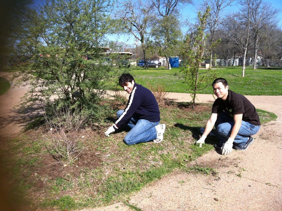 two volunteers pulling weeds at a city park