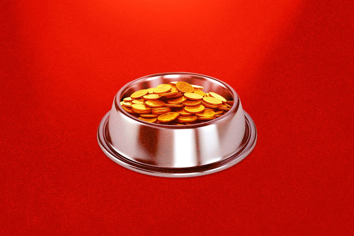 A dog bowl with coins symbolizing the Dogecoin cryptocurrency.