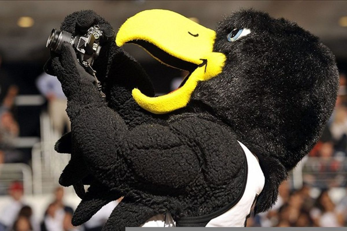 Gotta love a giant bird mascot trying to operate a camera.