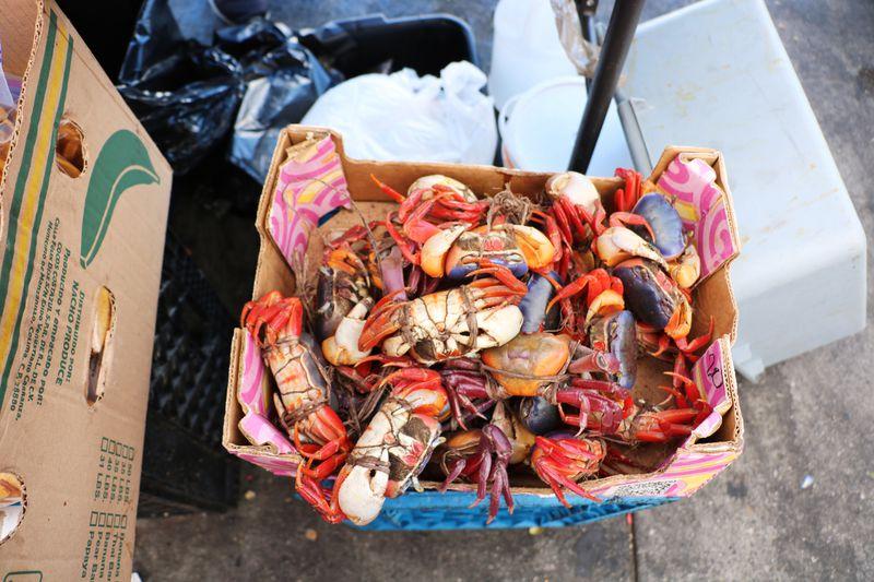 Live crabs sitting in a box at LA's Salvadoran street market.