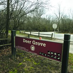 The Deer Grove west entrance along Quentin Road north of Dundee Road in Palatine.  Deer Grove is the oldest forest preserve in the nation.