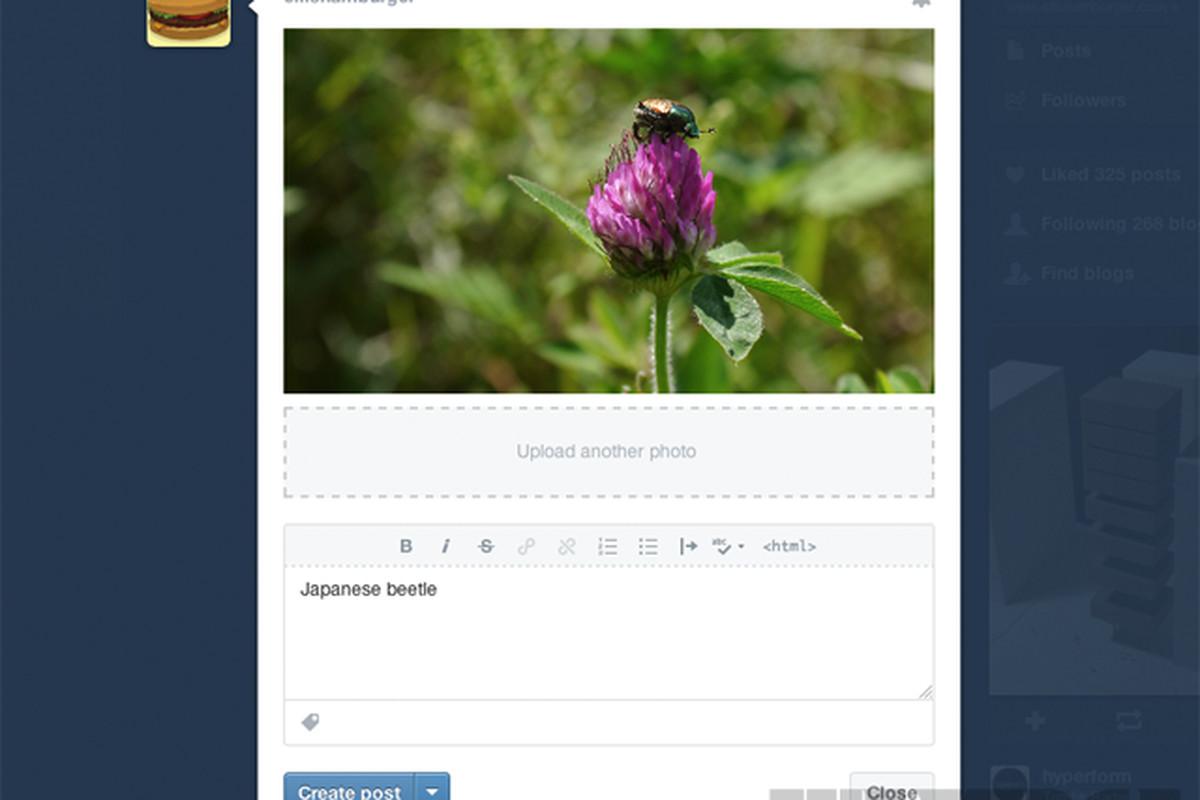 tumblr compose window