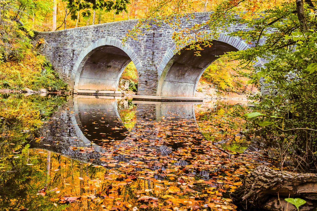 A stone bridge over a body of water surrounded by trees with multicolored autumn leaves in Philadelphia.