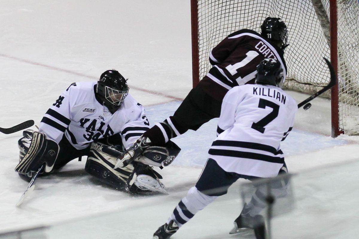 Union forward Sam Coatta scores against Yale Friday night.