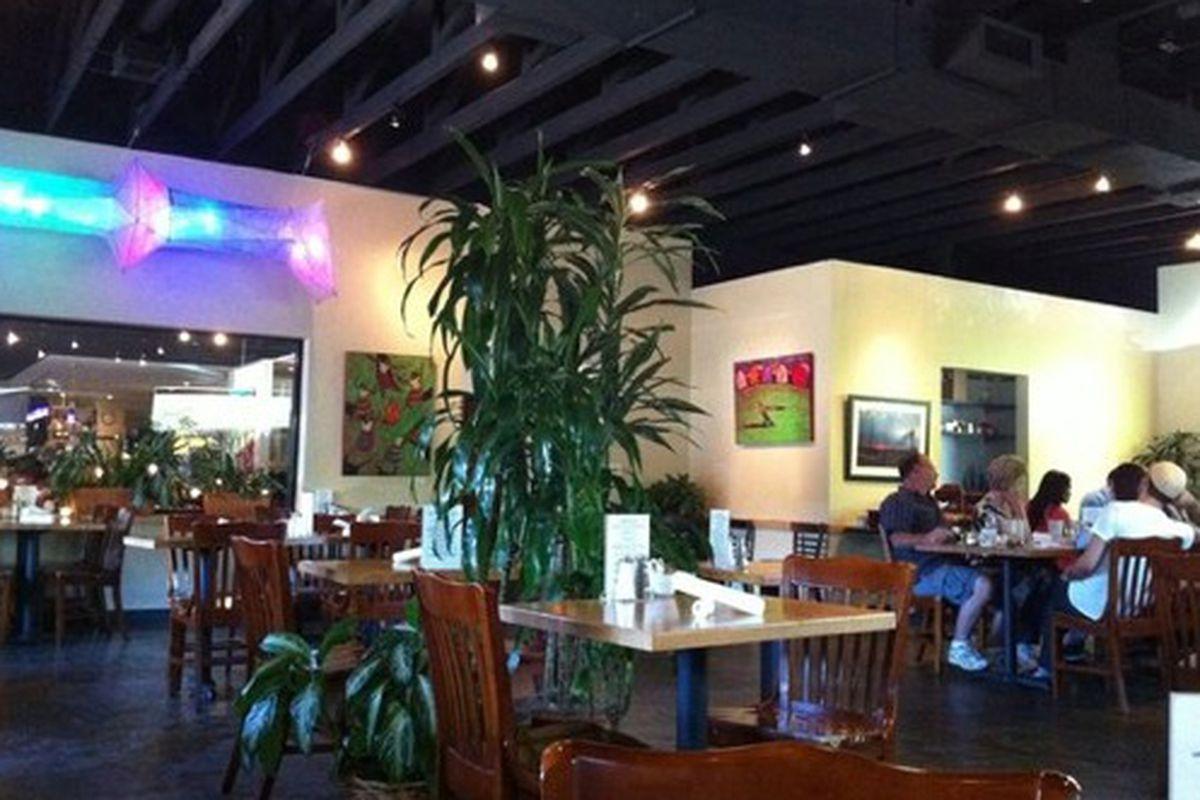 Mother's Cafe & Garden.