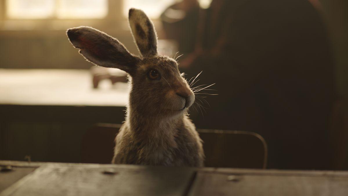 lee scorseby's daemon, a hare named Hester