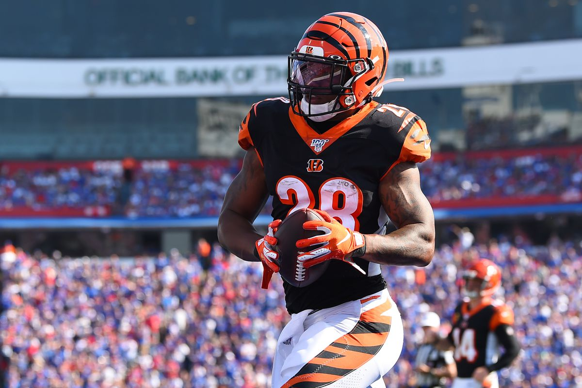 Cincinnati Bengals running back Joe Mixon (28) catches a pass in the end zone for a touchdown against the Buffalo Bills during the fourth quarter at New Era Field.