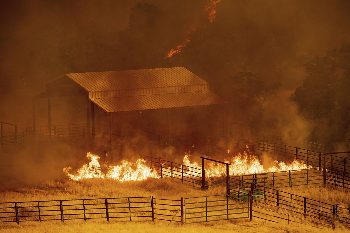 Flames rise around an outbuilding as the County Fire burns in Guinda, California.