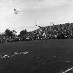 1964-FSU #25 Fred Biletnikoff catching the football during game in Tallahassee against UF.