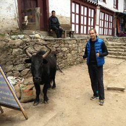 Steve Pearson stands next a yak last month in Nepal before climbing Mount Everest.