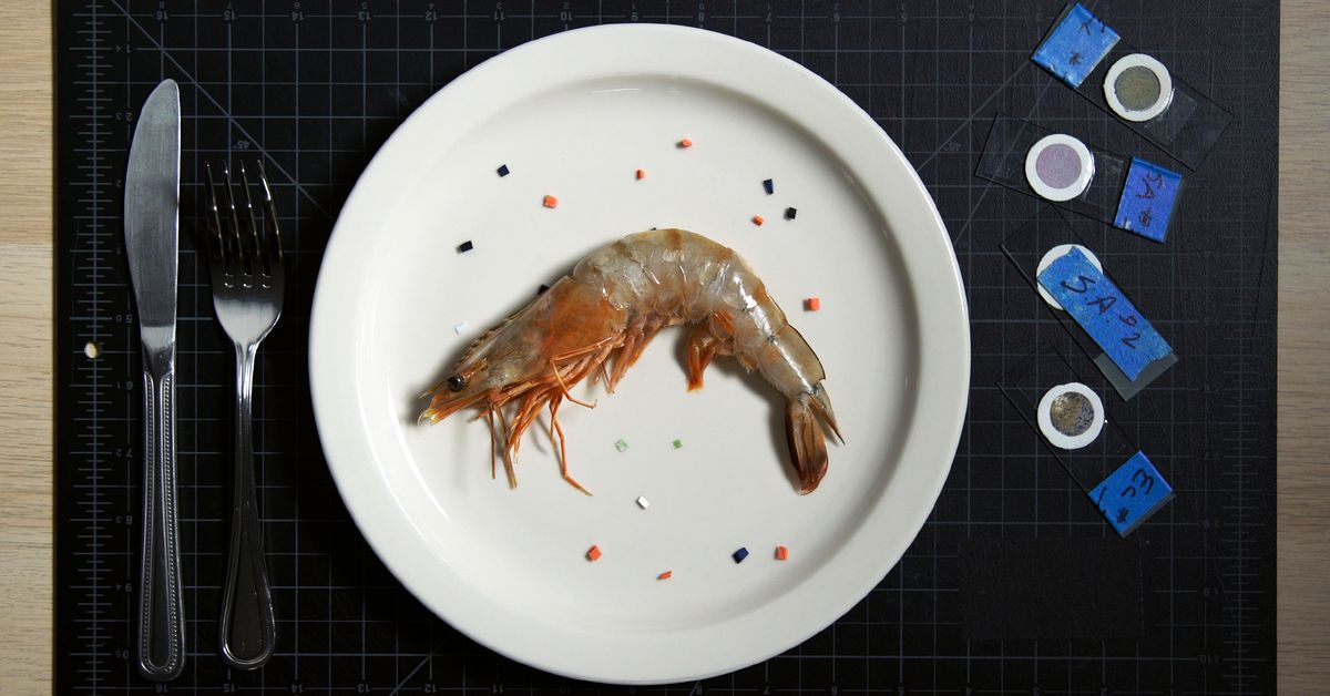 Hunting for microplastics in your seafood