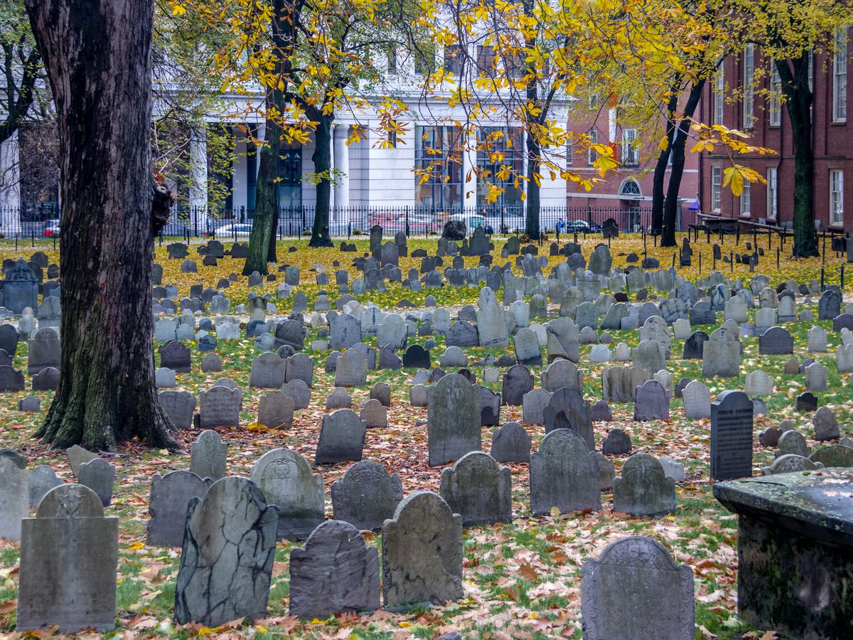 Rows and rows of old headstones below trees changing color.