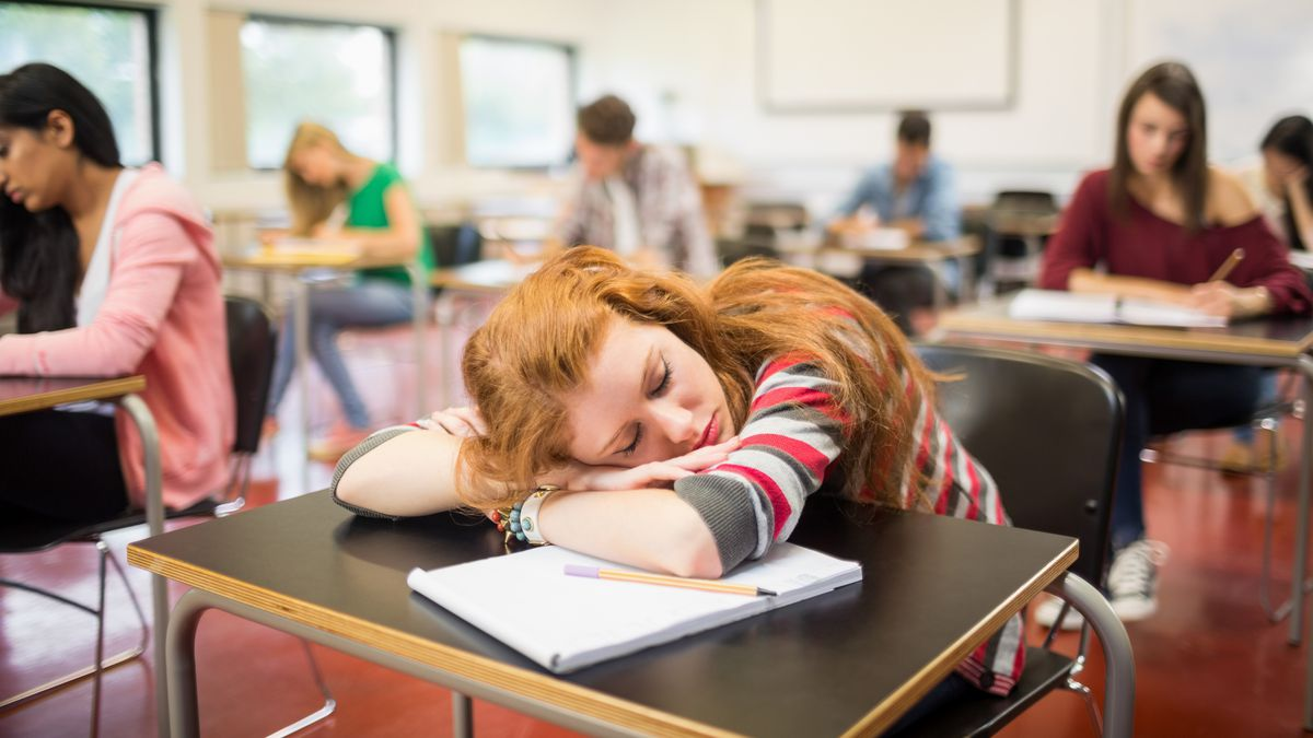 High school kids are bored and not learning. Here's how to fix that. - Vox
