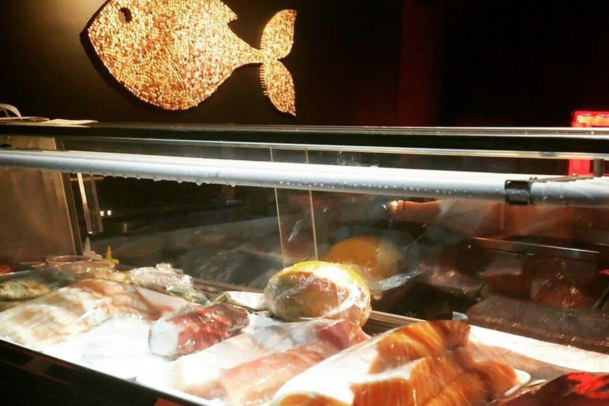 Fish In The Spotlight