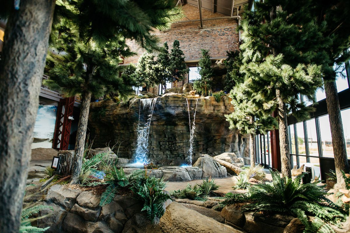 The interior of the Outdoor Adventure Center in Detroit. There are rocks, trees, and a waterfall in the room. There are floor to ceiling windows.
