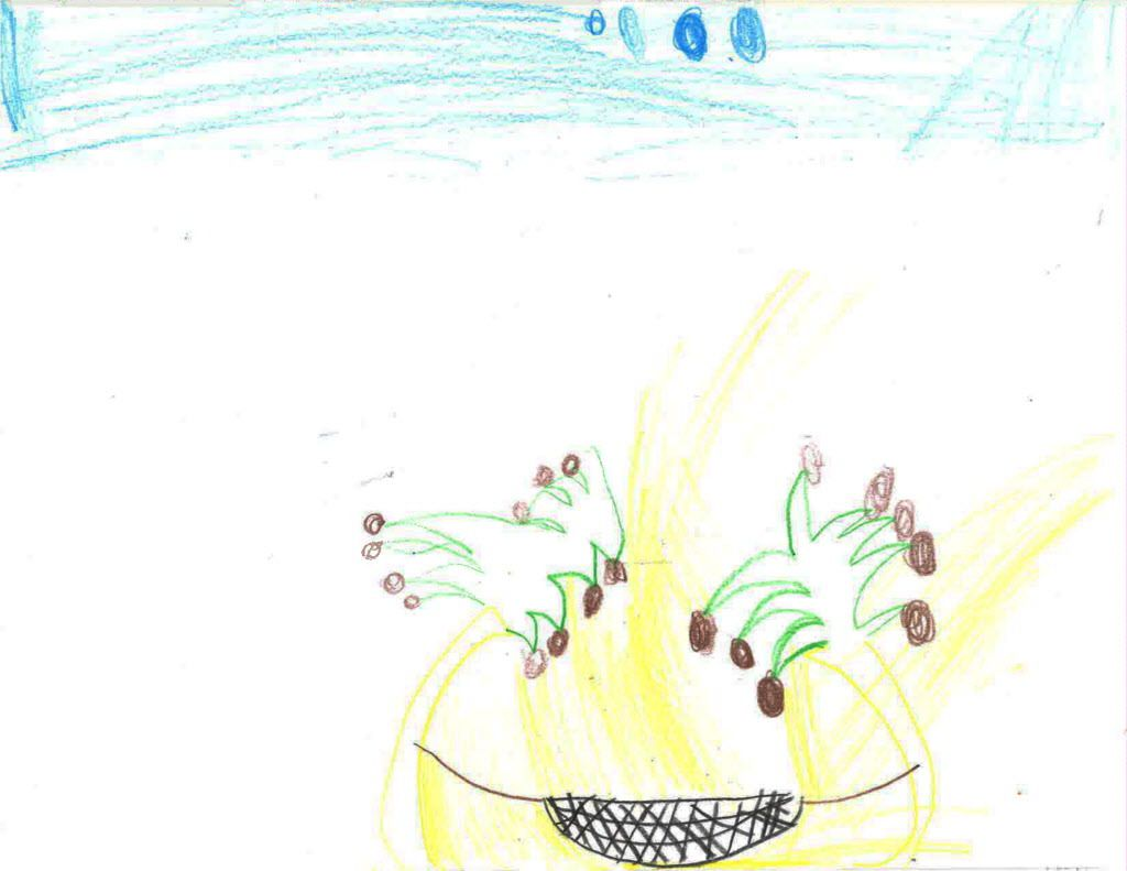 A drawing by a 9-year-old boy, identified only as C.D.A., who has been separated from his family for roughly a month and is being held in Chicago. The picture is of palm trees and a hammock — a place that makes him happy, his lawyer said.