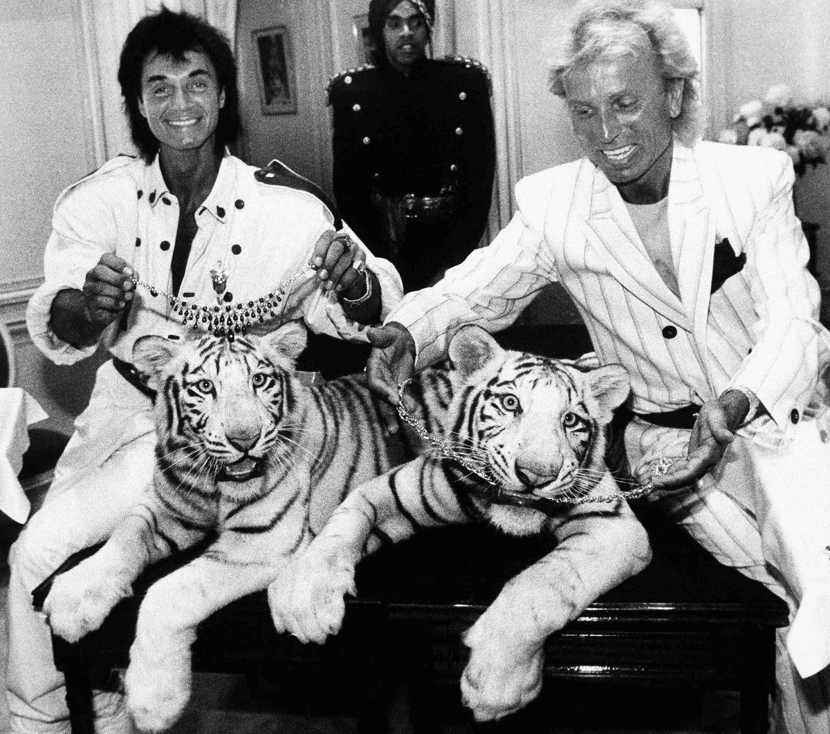 Magicians Roy Horn (left) and Siegfried Fischbacher pose in New York with their rare white tigers, Neva (left) and Vegas, in 1987.