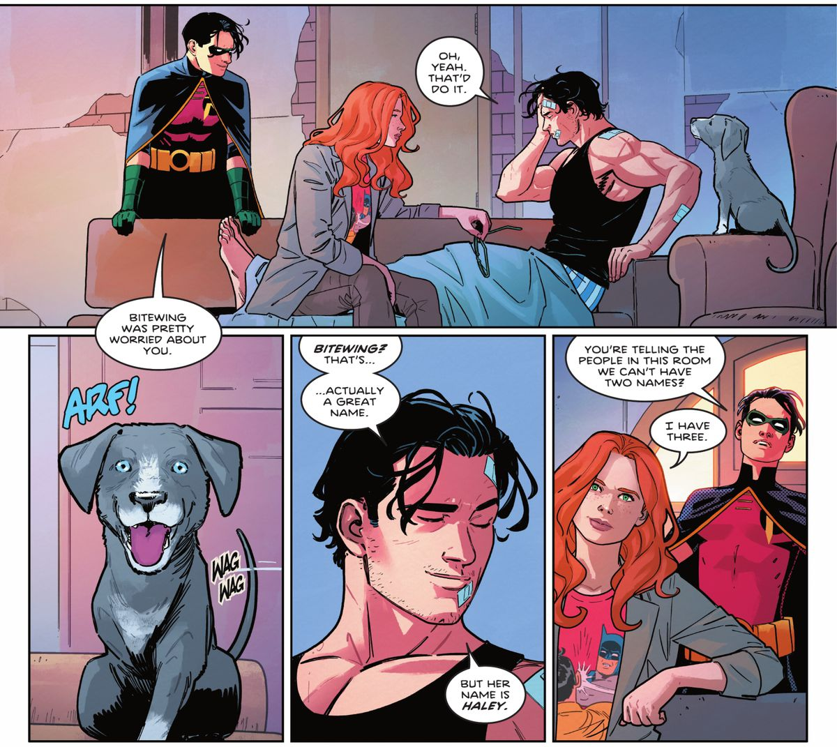 """Dick Grayson, Robin, and Barbara Gordon discuss naming his rescued, three-legged puppy either Bitewing or Haley. """"You're telling the people in this room we can't have two names?"""" Robin asks. Barbara is wearing a shirt with the Batman Slapping Robin meme on it, in Nightwing #81 (2021)."""