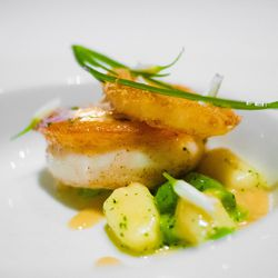 """Turbot with Gnocchi, Pea and Onion Ring at Per Se by <a href=""""https://www.flickr.com/photos/soundofdesign/13771646144/in/pool-eater"""">soundofdesign"""