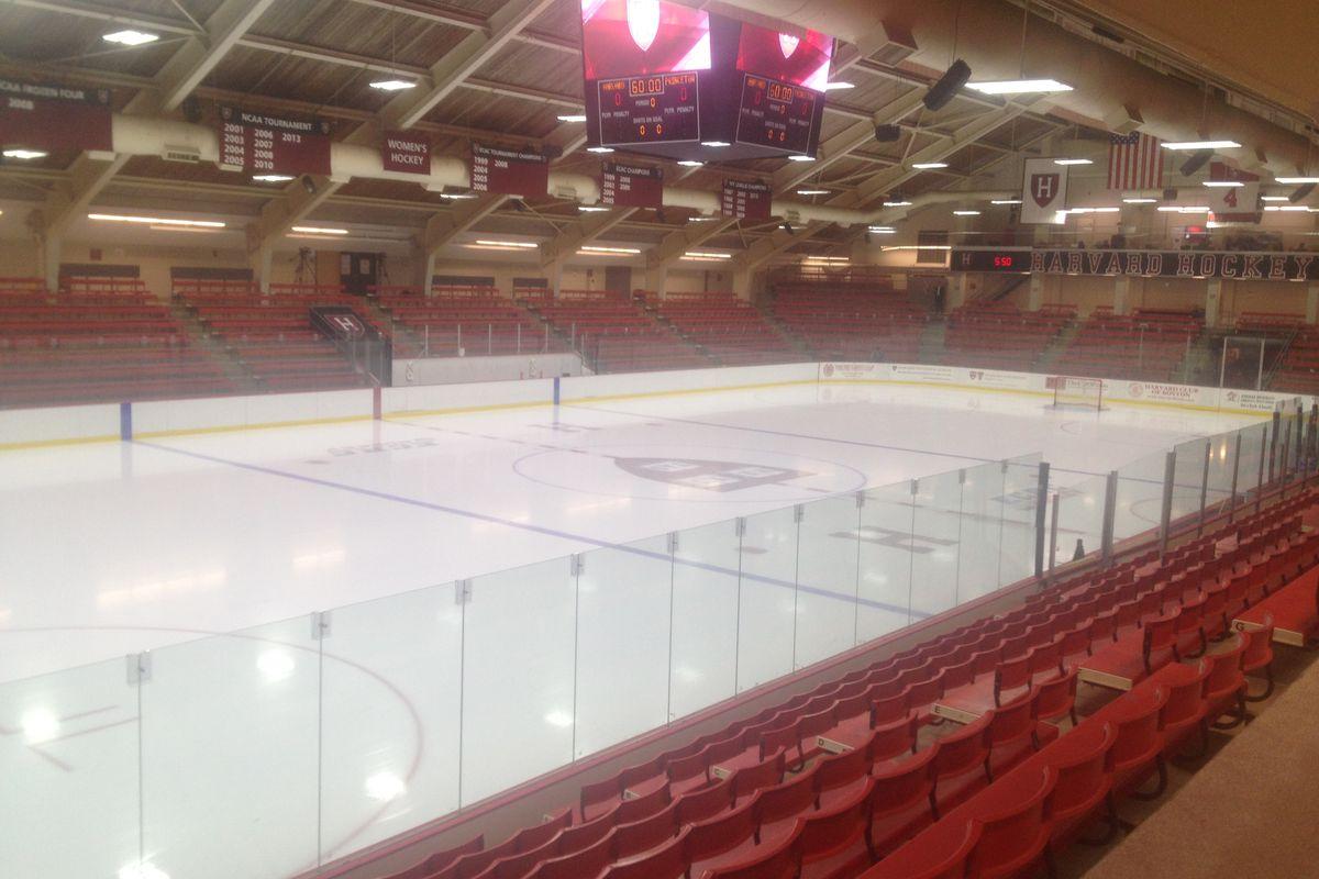 Harvard Rink