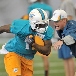 Jul 26, 2013; Davie, FL, USA; Miami Dolphins wide receiver Mike Wallace (11) runs practice drills during training camp at the Doctors Hospital Training Facility at Nova Southeastern University.