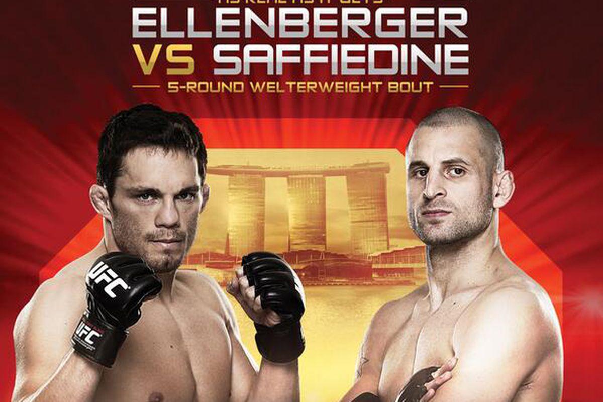 UFC Fight Night 34 full poster...