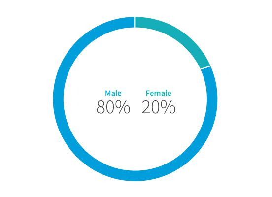 A donut chart showing that LinkedIn's employees are 80% male, 20% female.