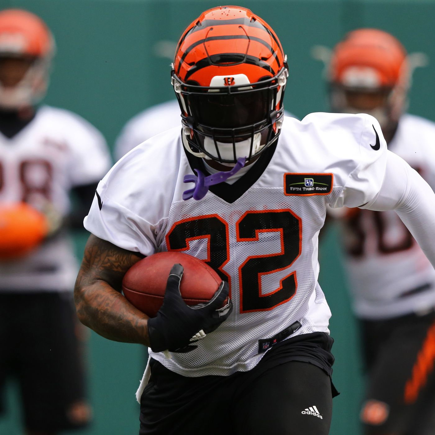 Bengals roster breakdown, 90-in-90: now or never for Jeremy Hill ...