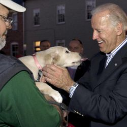 In this Sept. 8, 2012, photo, Vice President Joe Biden pets a golden retriever puppy named Karma held by her owner Rod Siddons outside a Obama campaign office in Chilicothe, Ohio. Biden buddied up with bikers, posed for countless pictures at a pizza place and downed an ice cream cone at a Dairy Queen over the weekend as he toured Ohio. Biden loves Ohio. The only question now is whether Ohio loves him _ and President Barack Obama.