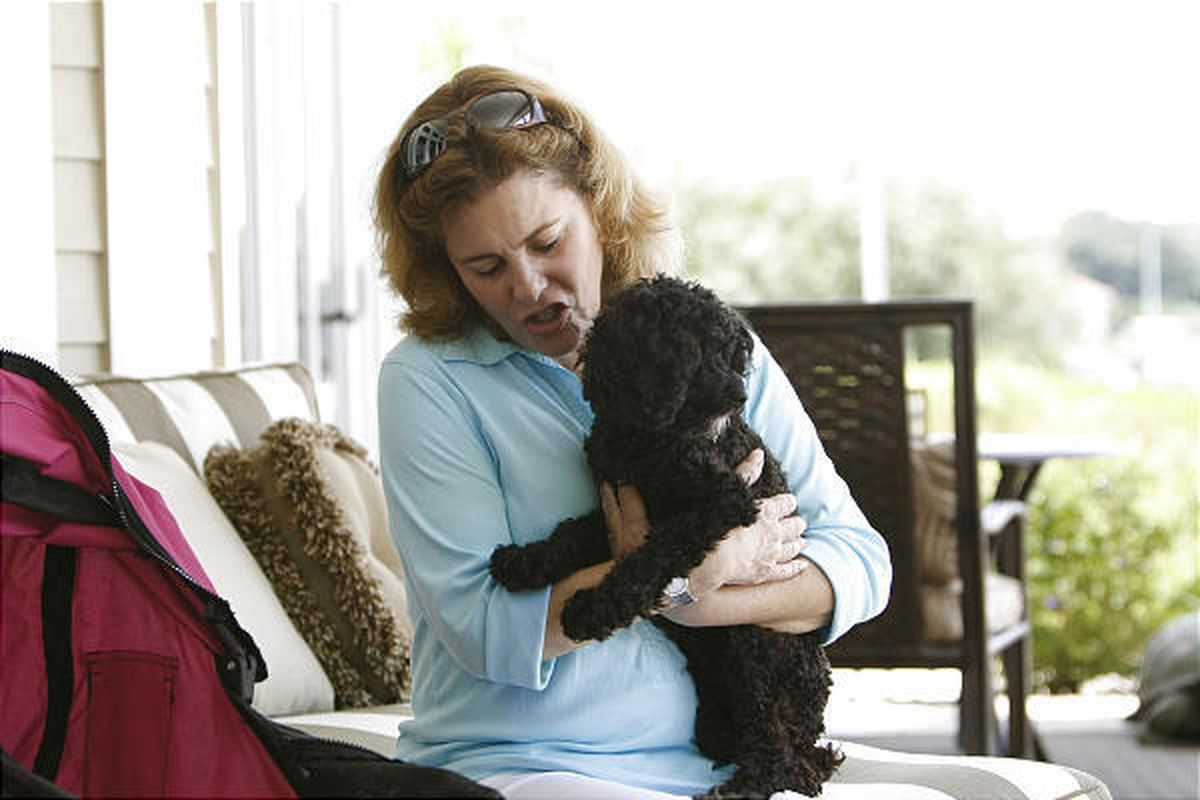 Carol Fischman holds Lucy the Labradoodle at their Vero Beach, Fla., home last June. Lucy can only scoot around the ground to grab a bone — she is unable to walk, crippled by rheumatoid arthritis that has rendered her back limbs unusuable. But her owner b