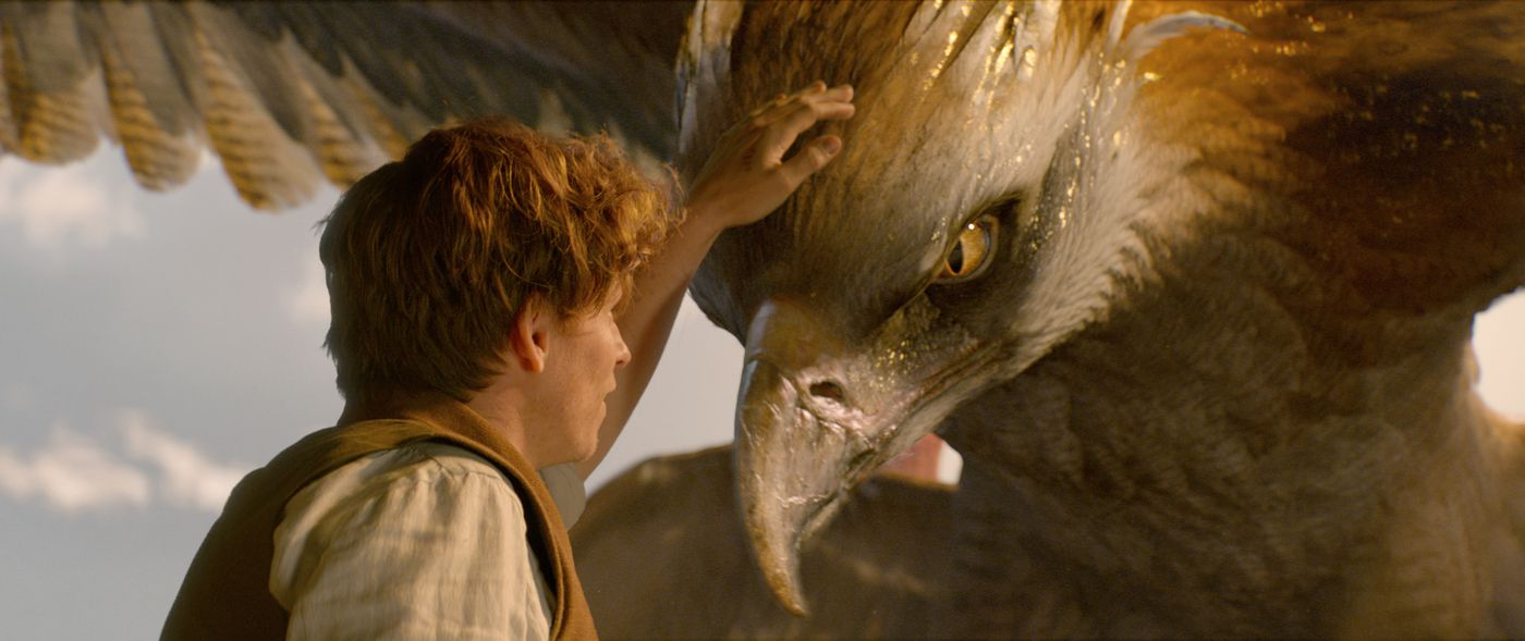 To tie up the loose strings of Fantastic Beasts, you have to dig