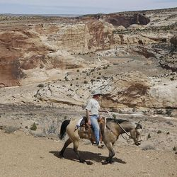 Mike Vanderhoof rides along the ridge above Salt Wash in the Sid's Mountain Wilderness Study Area of the San Rafael Swell  Friday, April 1, 2011, in the San Rafael Swell in Central Utah.