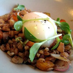 """Slow-cooked egg over savory chicken-giblet fried farro from Plum by <a href=""""http://www.flickr.com/photos/49295916@N02/4881603800/in/pool-520531@N21/"""">TheDapperDiner</a>"""