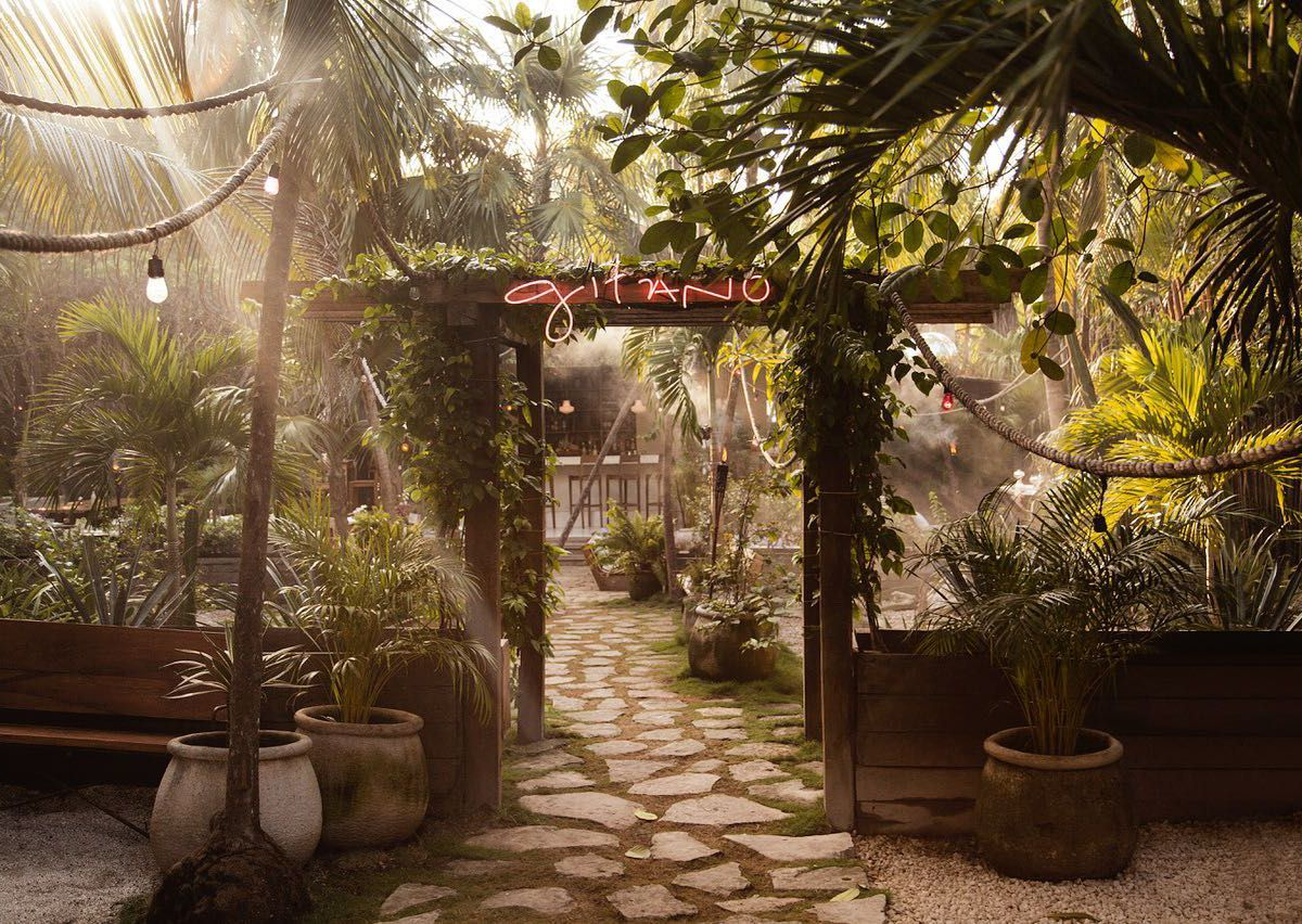 The entrance to an outdoor seating area, surrounded by lush forest, with sun peaking through the leaves, and a bright neon sign bearing the name Gitano